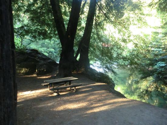 Big Sur Campground  Cabins Big Sur CA  California Beaches