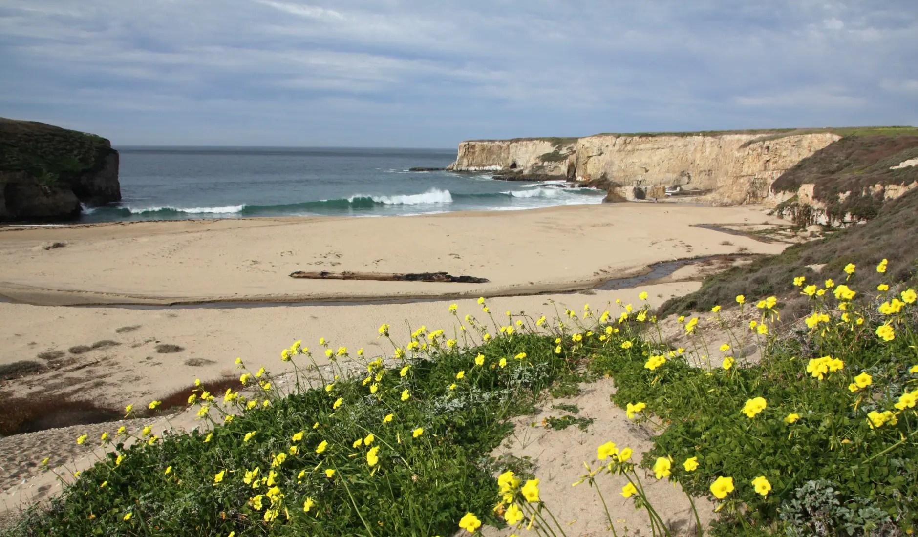 Coast Dairies State Park Beaches California Beaches