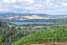 Mt. Konocti Winery