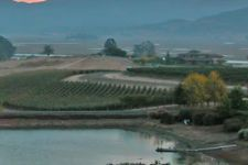 Keller Estate Winery