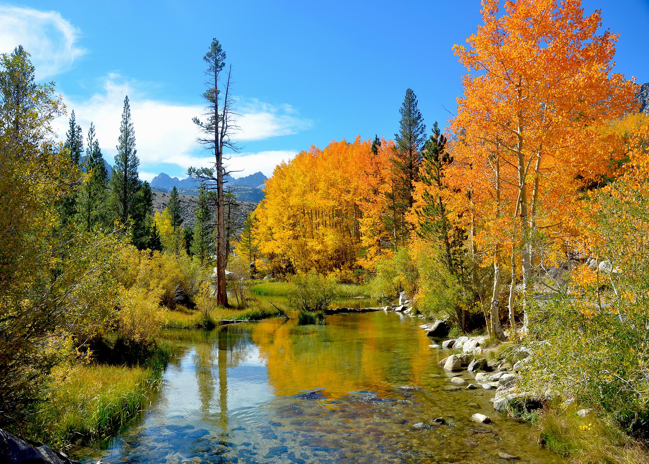 Waterfalls Live Wallpaper 3d Hd Eastern Sierra At Full Peak Go Now California Fall Color