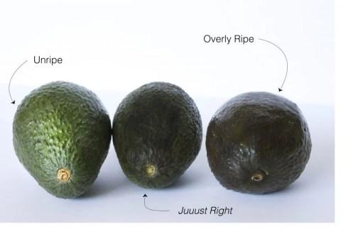 avocado ripeness