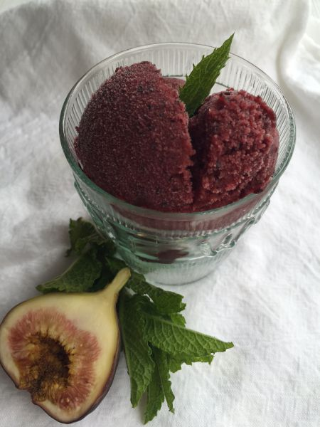 blueberry sorbet with polimiers
