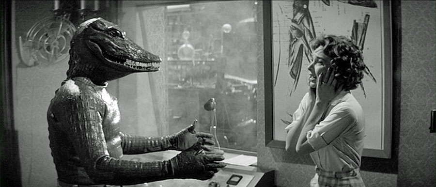 alligators and crocodiles in