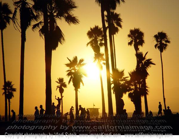 https://i0.wp.com/www.californiaimage.com/gallery_stuff/images/Venice-Beach-Skaters.jpg