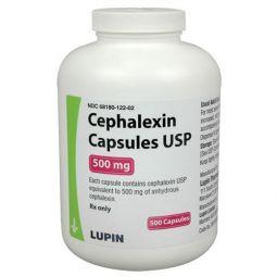 Cephalexin: California Pet Pharmacy