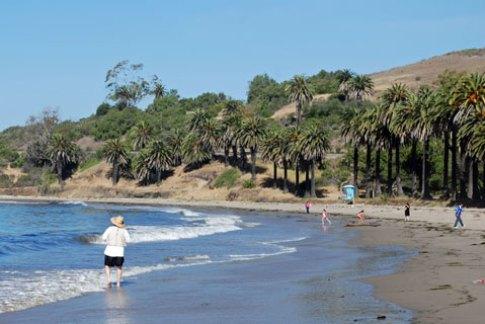 Refugio State Beach Spot