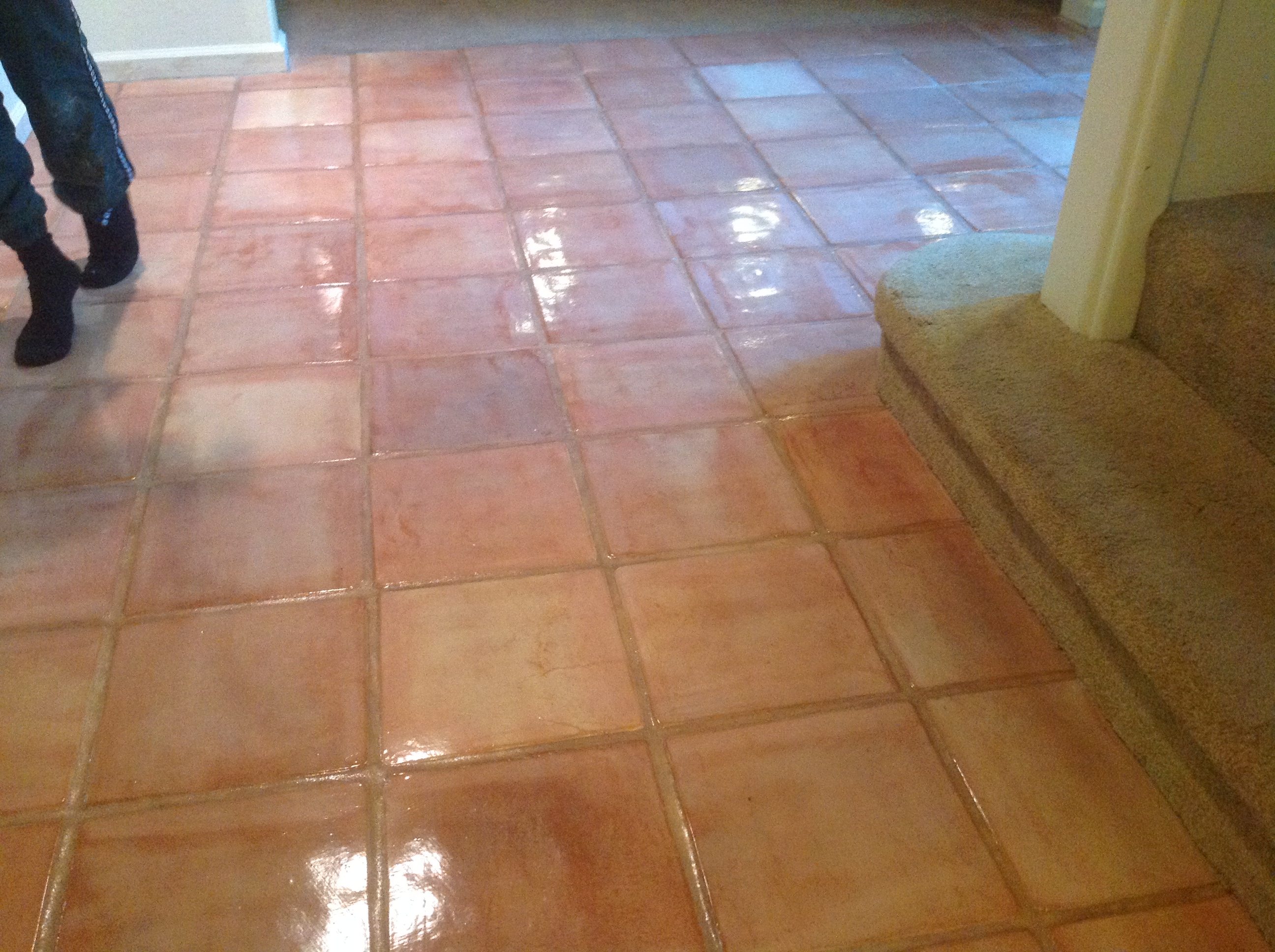 tile staining services northern