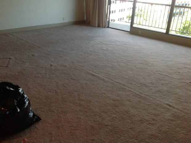 Carpet Over Tile Home Design Ideas