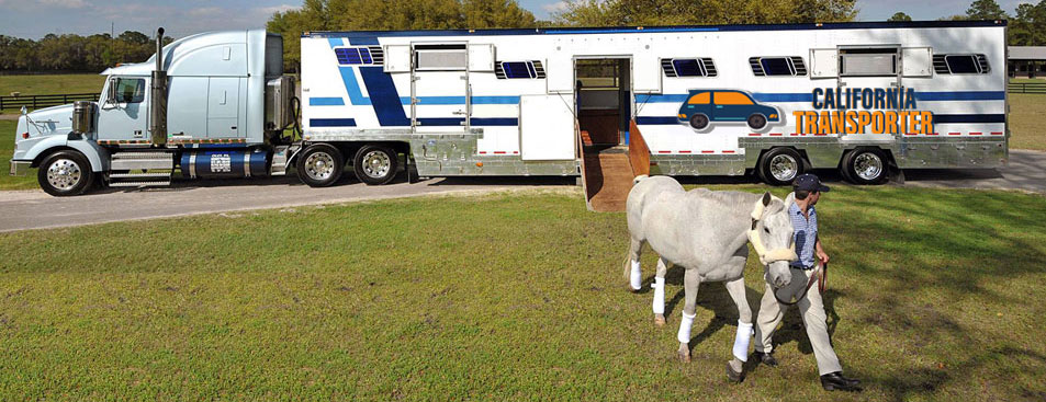 Horse transport companies in California, California Horse transport service
