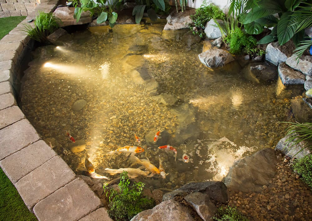 Our Storefront Remodel Pondless Waterfall Fountains Fire