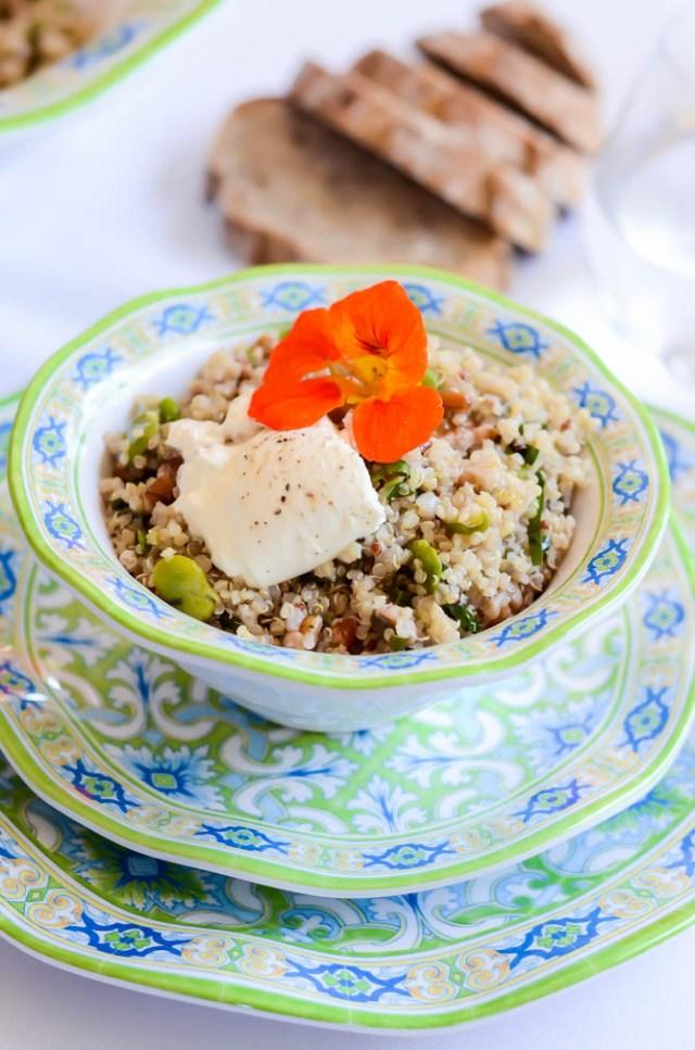 A single serving of Spring Fava Bean and Burrata Grain Salad in beautiful QSquared melamine dinner ware.
