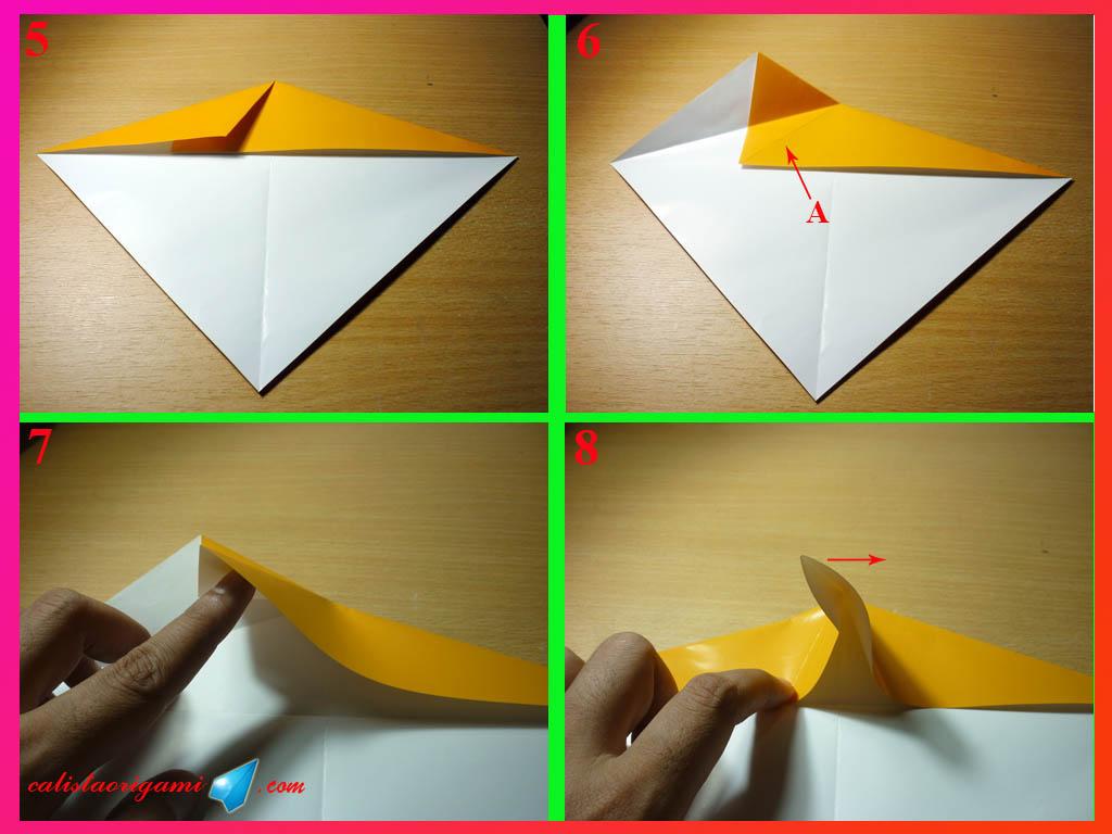 Cara Membuat Origami Ikan Paus  Origami Binatang