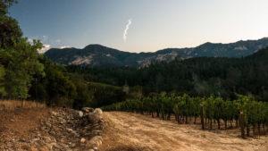 Calistoga-ava_volcanic-soil