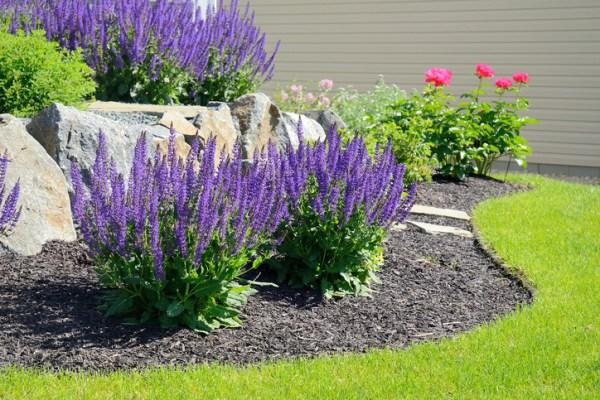 5 -maintenance landscaping ideas