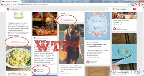 Pinterest Promoted Pins – Is Pinterest as we knew it dead?