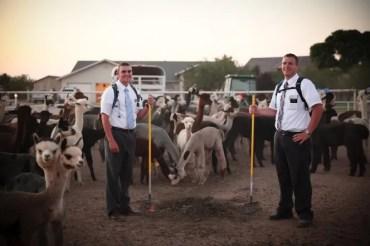 missionary service sacrifice