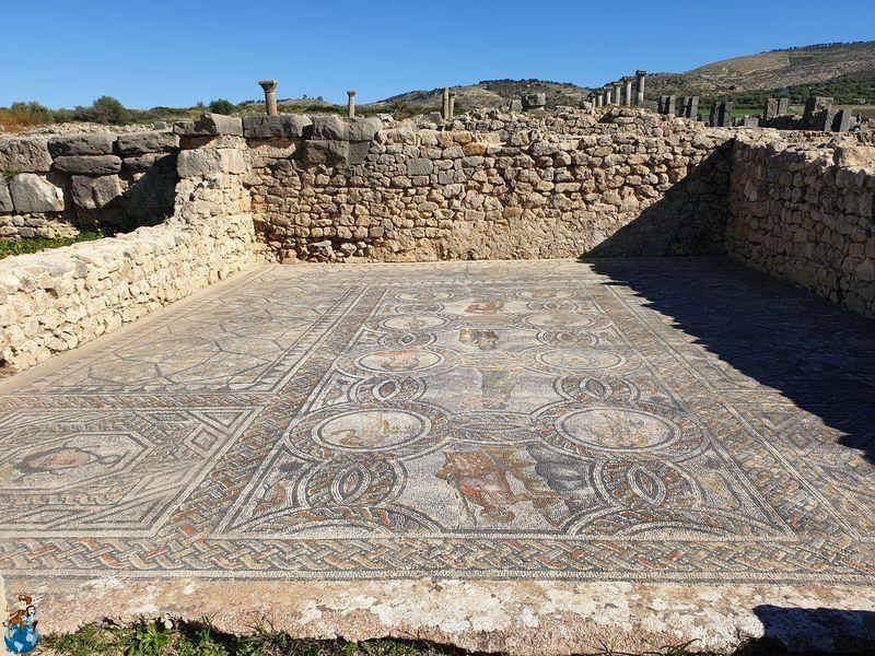 Casa de Dionisio y las Cuatro Estaciones - Volubilis