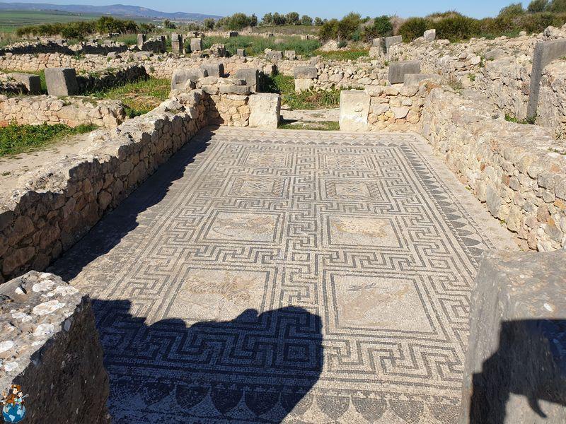 Casa del Baño de las Ninfas - Volubilis