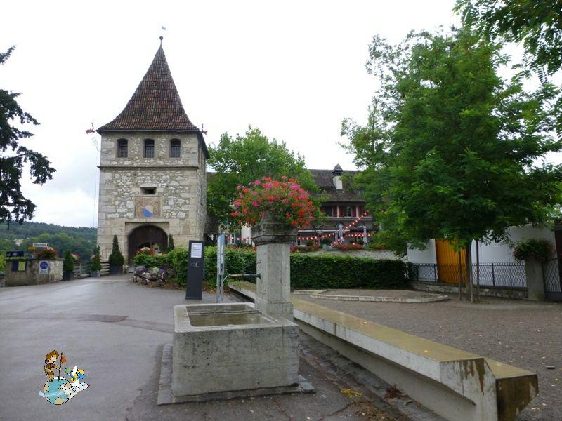 Entrada Castillo Laufen