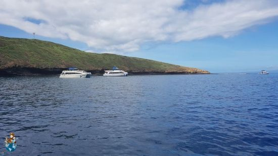 Snorkel en Cráter Molokini - Isla de Maui