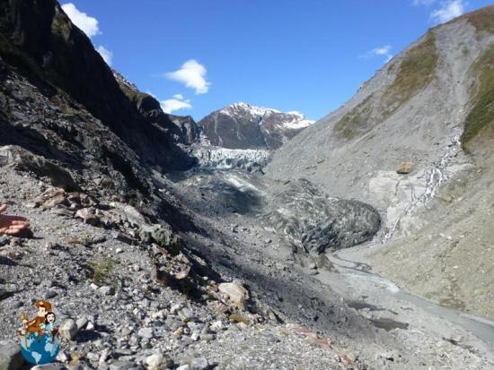 Glacial Fox - Nueva Zelanda