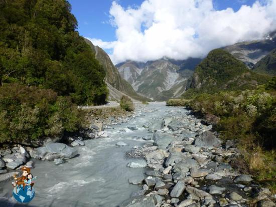Sendero para llegar al Glacial Fox - Nueva Zelanda