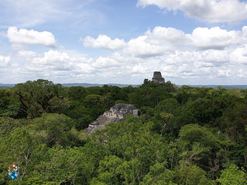 Vistas desde la Gran Pirámide Mundo Perdido - Tikal