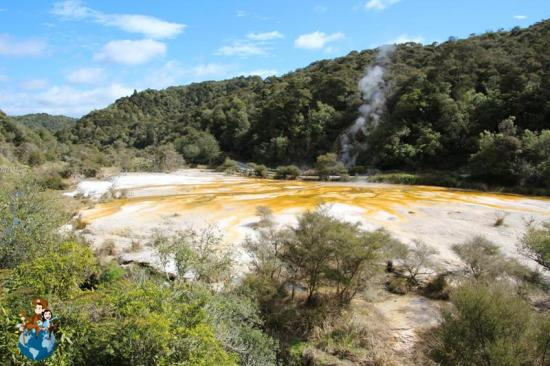 Warbrick Terraced - Valle volcánico Waimangu