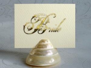 Wedding Calligraphy Photo Ideas