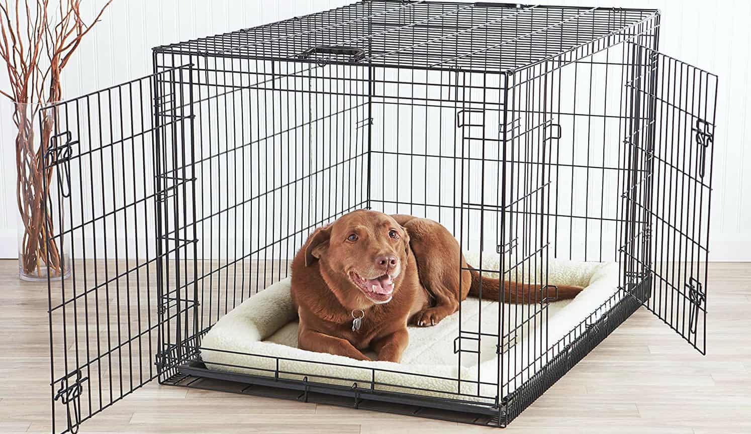 Double Door Dog Crate as the second related product of the Best Dog Crate