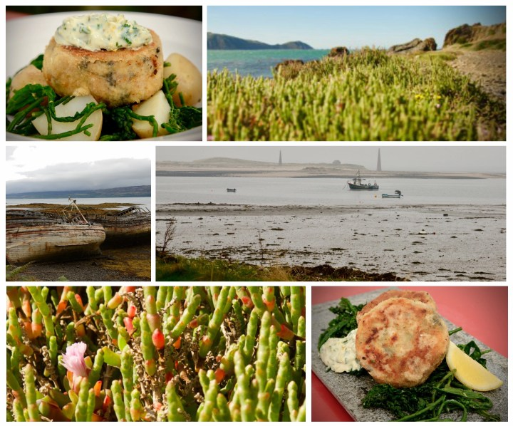"""A collage showing """"taste of the seacakes"""" - along with photos of the seaside and samphire"""