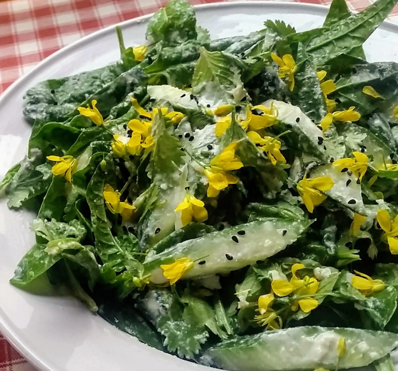 A salad of freshly picked spinach and herbs with cucumber and lemon ginger dressing, garnished with nigella seeds and mizuna flowers