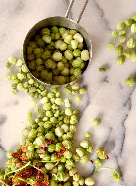 Sorting nasturtium capers on a marble bench into a measuring cup