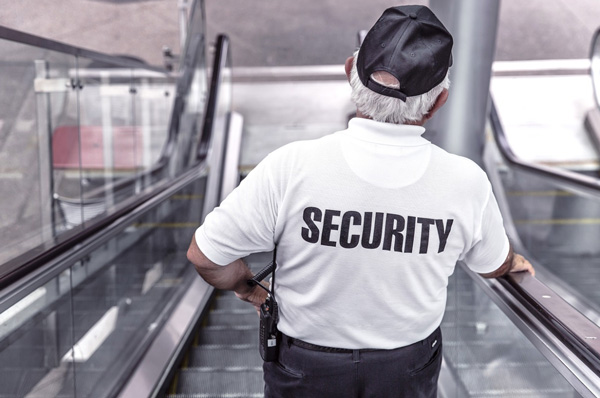 electronic security guard