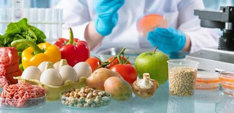 Important Facts On Food Safety