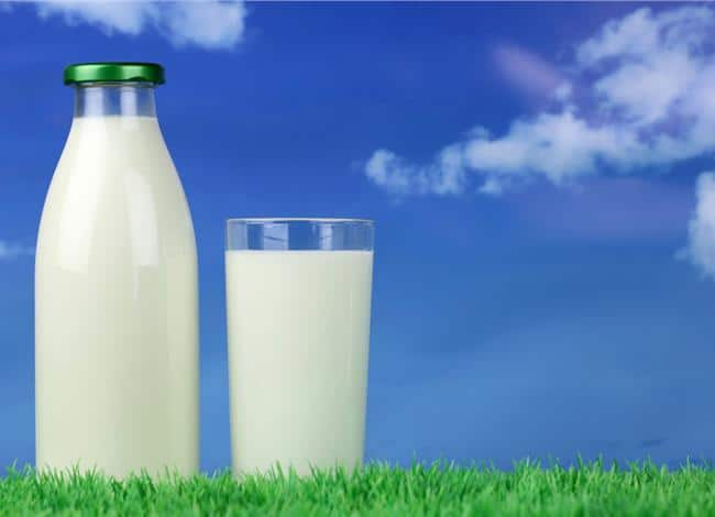 What is the Healthiest Milk to Drink?