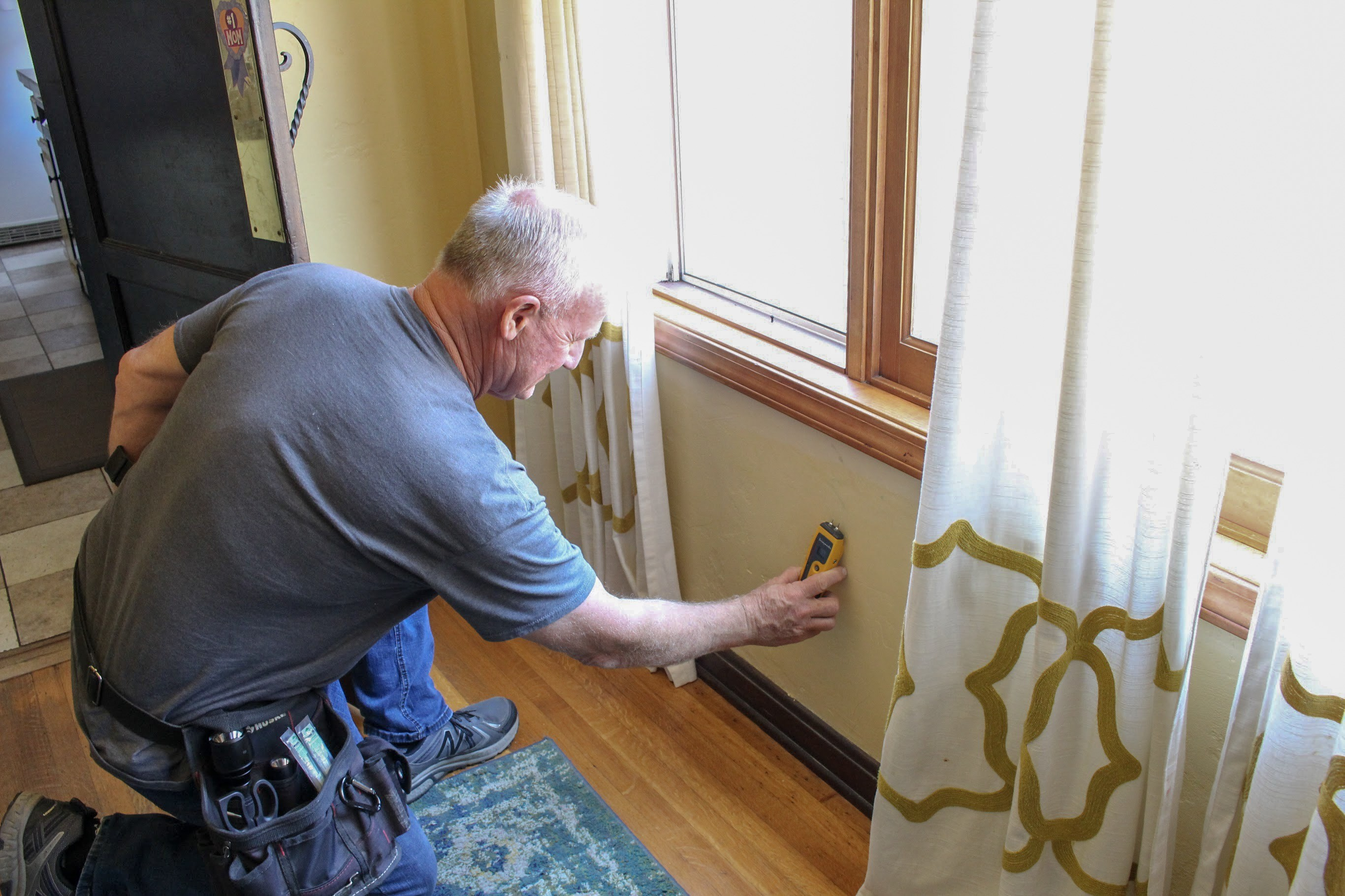 Cost Of Mold Inspection