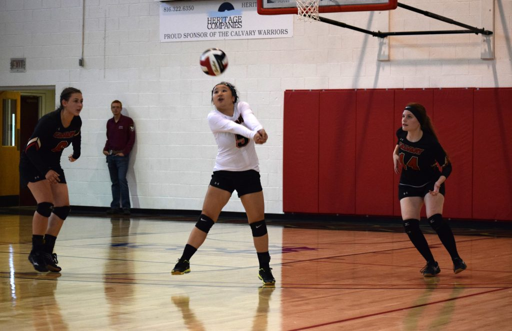 Volleyball Team Enjoys Stretch of Home Matches