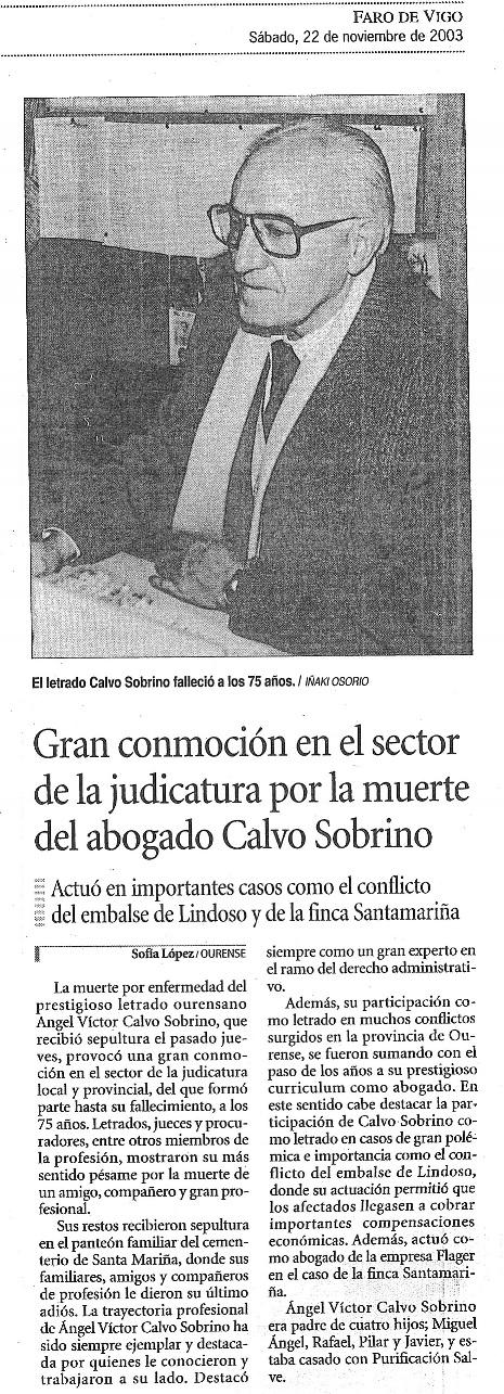D. Ángel Víctor Calvo Sobrino