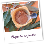 Rhapontic – Rheum rhapontica root powder