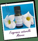 FT_trombone_fragrance-naturelles_MS_moorea_0