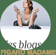 macaron-figaro-madame-best-blog
