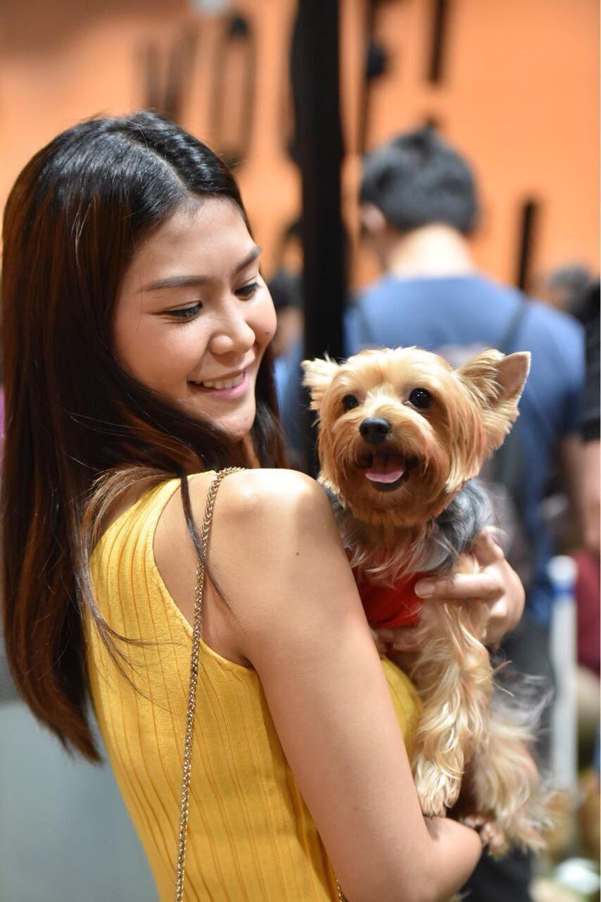 Bark Central PH: The First Indoor Dog Park in Metro Manila - Calyxta