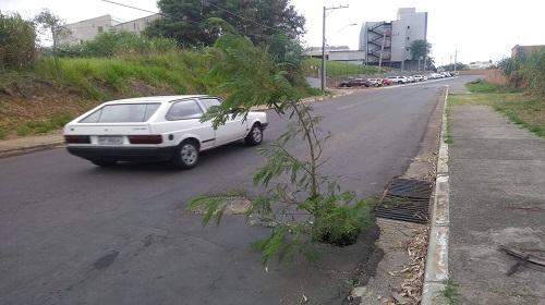 avenida brasilia