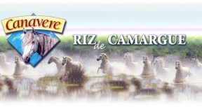 https://i0.wp.com/www.camargue.fr/clients/riz-canavere/VISUELS/sliders/mid/1394807235-canavere-accueil01.jpg?resize=288%2C153&ssl=1