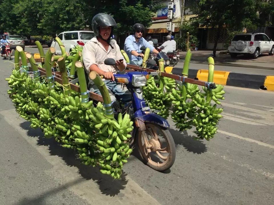 How many bananas can you fit on a moto?