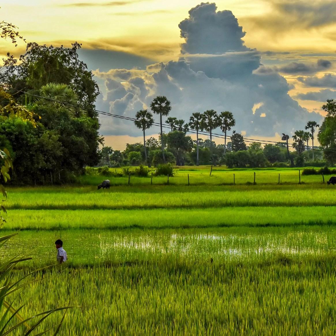 Stunning Siem Reap, Cambodia. Nish Verma Siem Reap.