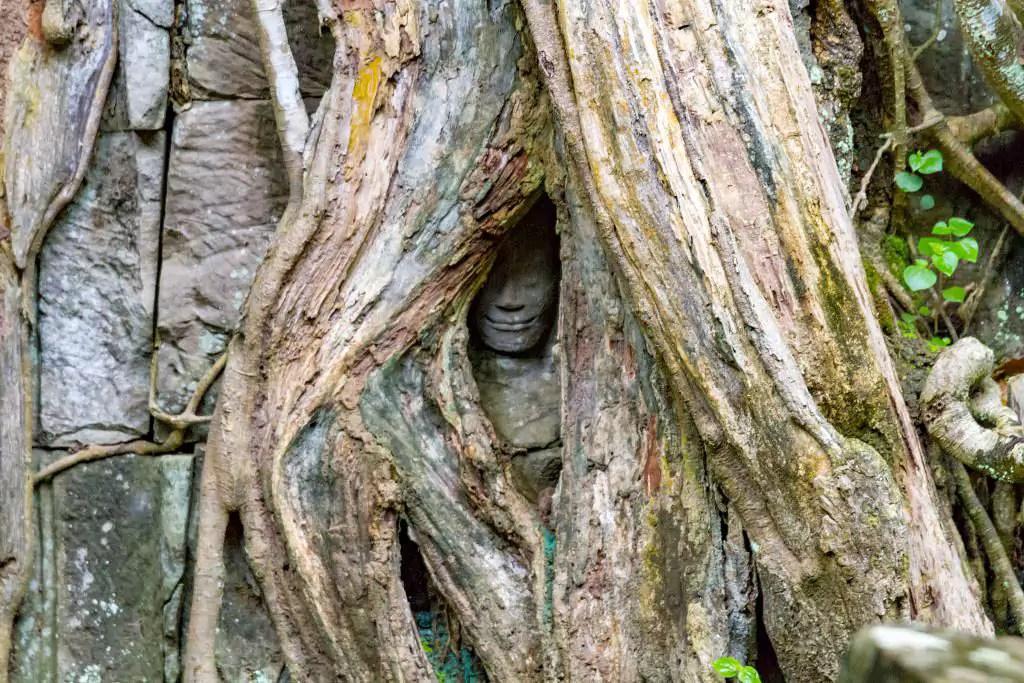 Exploring Angkor Wat Temple Complex in Cambodia 05
