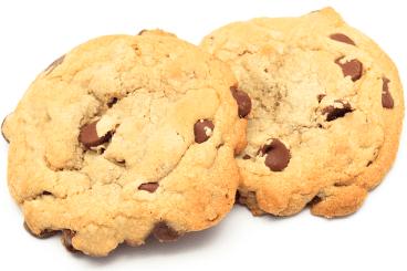 choc-chip-cookies_1000
